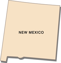 new-mexico-state-taxes-03; blackline map of new mexico