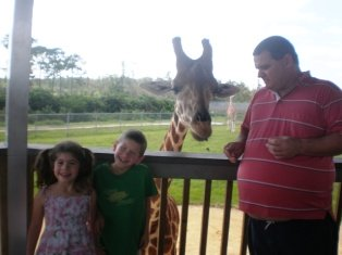 attractions-for-road-trip-01; at a zoo feeding a giraffe