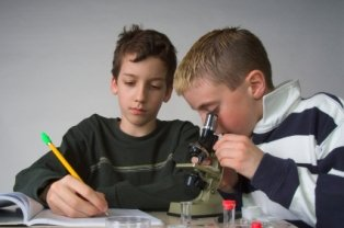 homeschooling-facts-03; two homeschooling brothers looking through a microscope