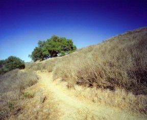 tourist-attractions-in-kansas-02; dirt road