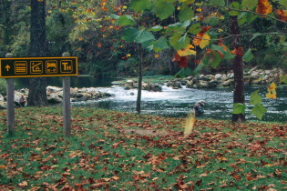 missouri-national-parks;Bennett Spring trout fishing